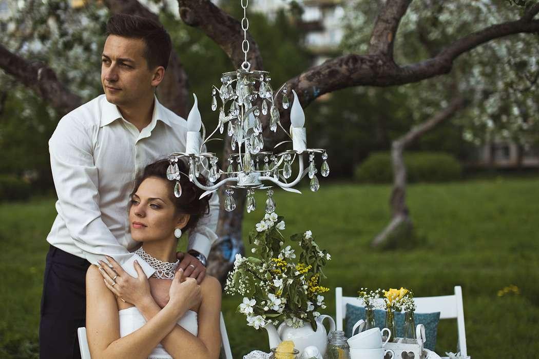 Фото 1934835 в коллекции Весенняя LoveStory в яблоневом саду - Свадебный фотограф Анна Алфёрова
