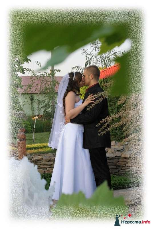 Фото 109325 в коллекции свадьба 29.05.10г. - Невеста01