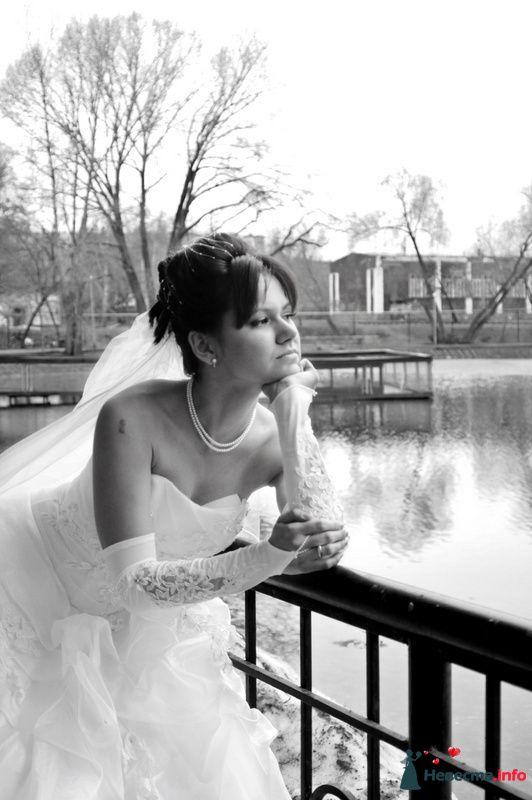Фото 104927 в коллекции Невеста - Фотограф Любовь Холмогорова