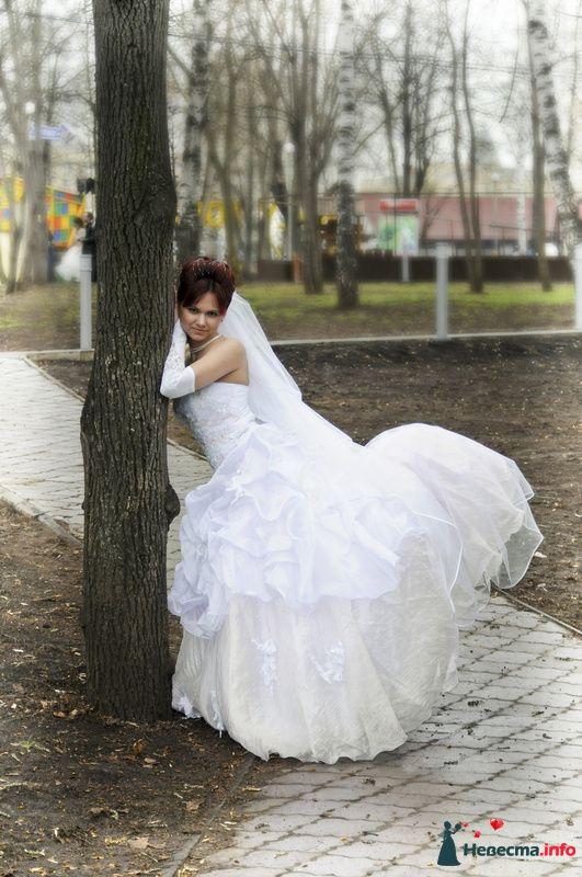 Фото 104930 в коллекции Невеста - Фотограф Любовь Холмогорова