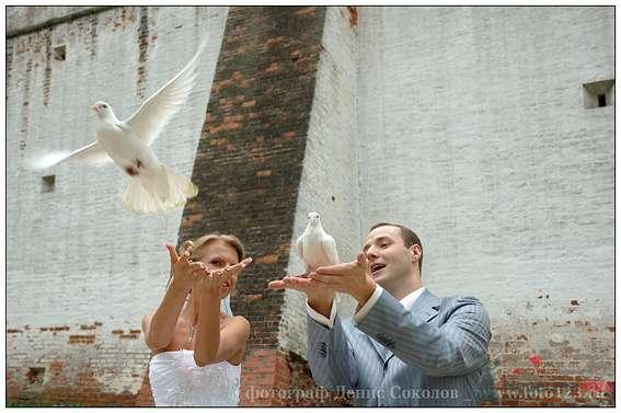 Фото 74625 в коллекции свадебные фото - Денис Соколов