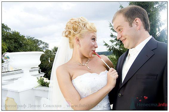 Фото 74867 в коллекции свадебные фото - Фотограф Денис Соколов