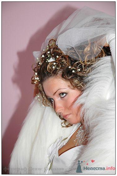 Фото 74901 в коллекции свадебные фото - Фотограф Денис Соколов