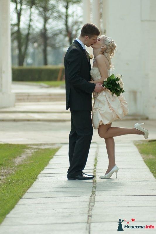 Фото 95329 в коллекции Свадебное фото
