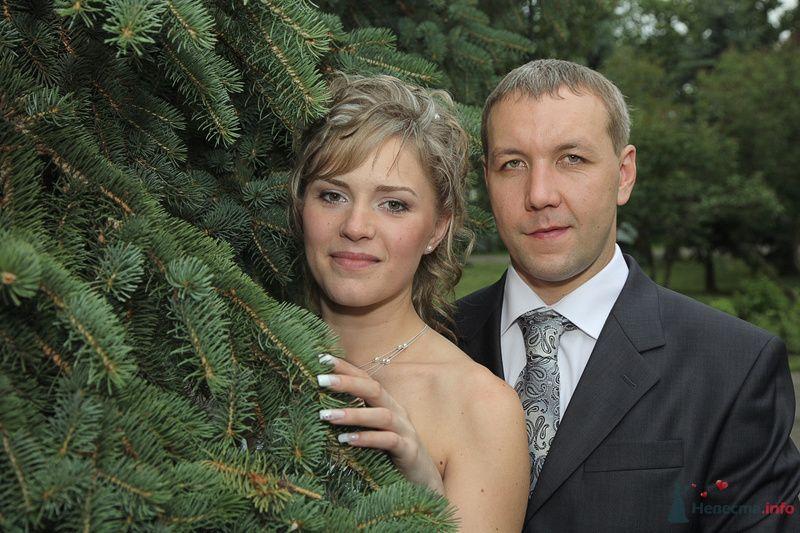 Здесь лапы у елей - фото 75145 Angeymaster - свадебная видео-фотосъемка