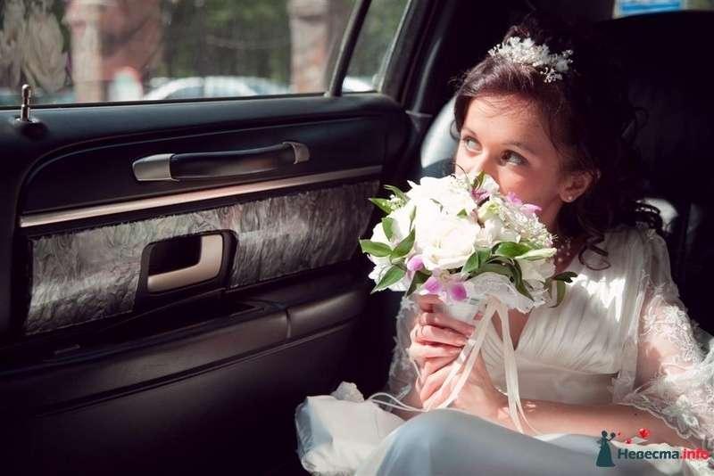 Фото 99944 в коллекции Свадьба - Тигрёна