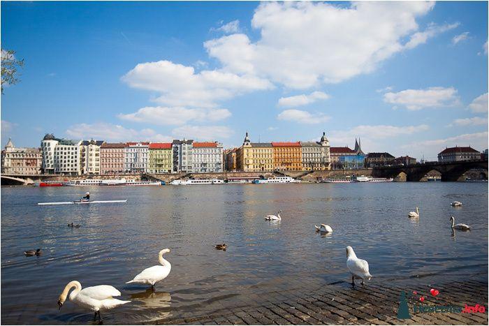 Фото 90724 в коллекции Прага