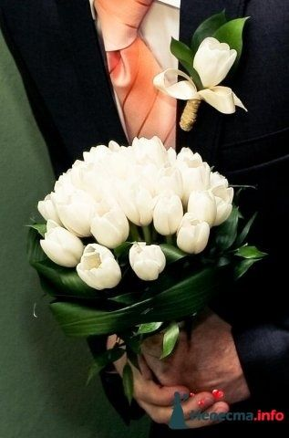 Фото 93672 в коллекции предсвадебное - Невеста)