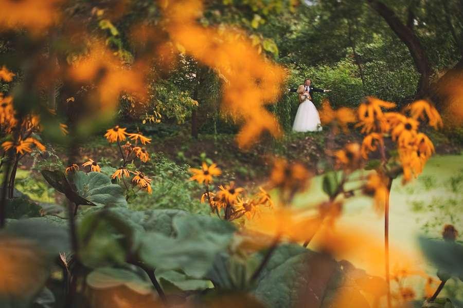 Фото 3111531 в коллекции Свадебный альбом. - Фотограф Анна Карцева