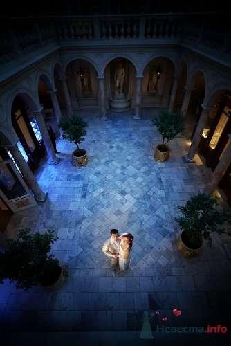 Фото 21156 в коллекции свадьба - ленча