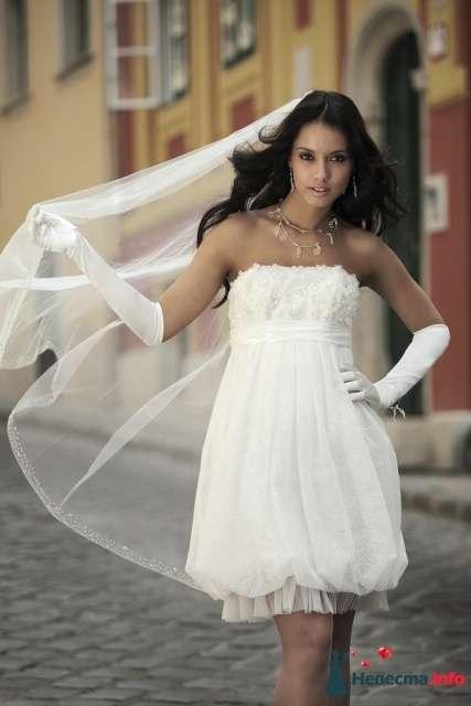 Фото 85333 в коллекции Короткие платья - Духовочка
