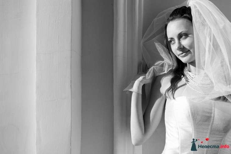 Невеста в белом платье стоит возле стены - фото 94139 Light Photo Studio - фотограф
