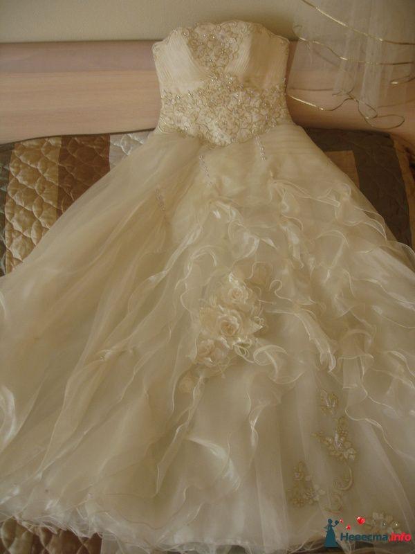 Платье полностью