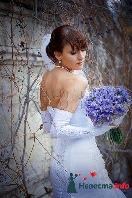Фото 97087 в коллекции Мои фотографии - Irinka-malvinka