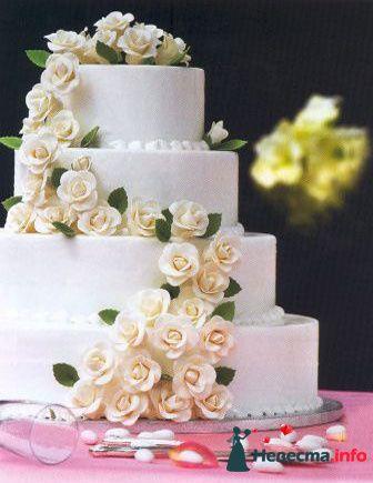 Фото 86199 в коллекции Мои фотографии - Невеста01