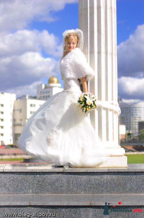 Фото 80820 в коллекции Свадьба Белгород