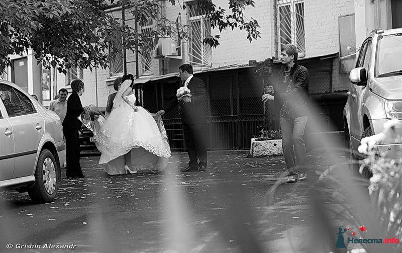 В движении - фото 81076 Видеограф Евгений Латышев