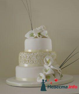 Фото 84742 в коллекции Торты - Свадебный распорядитель. Яна