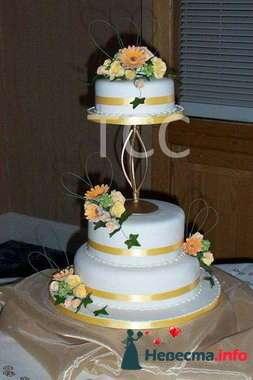 Фото 84804 в коллекции Торты - Свадебный распорядитель. Яна