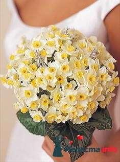Фото 84868 в коллекции Букет Невесты - Свадебный распорядитель. Яна