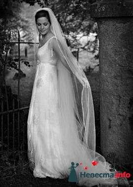 Фото 84876 в коллекции Свадьба - Свадебный распорядитель. Яна