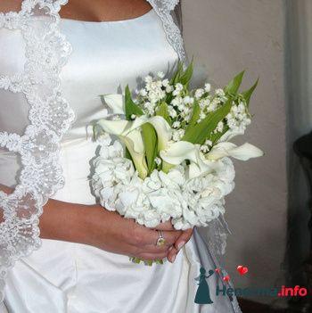 Фото 89801 в коллекции Букет Невесты - Свадебный распорядитель. Яна