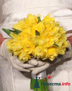 Фото 96613 в коллекции Букет Невесты - Свадебный распорядитель. Яна