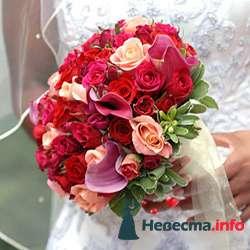 Фото 96626 в коллекции Букет Невесты - Свадебный распорядитель. Яна