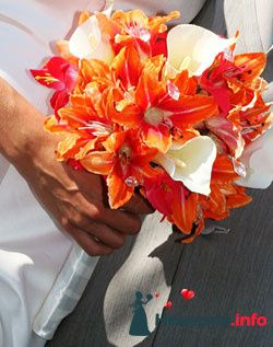 Фото 96649 в коллекции Букет Невесты - Свадебный распорядитель. Яна