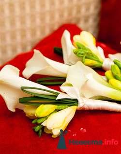 Фото 96662 в коллекции Букет Невесты - Свадебный распорядитель. Яна