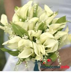 Фото 96669 в коллекции Букет Невесты - Свадебный распорядитель. Яна