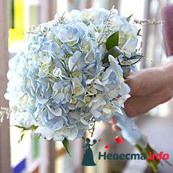 Фото 96677 в коллекции Букет Невесты - Свадебный распорядитель. Яна