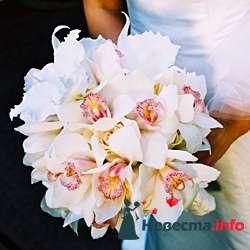 Фото 96688 в коллекции Букет Невесты - Свадебный распорядитель. Яна