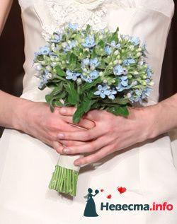 Фото 96694 в коллекции Букет Невесты - Свадебный распорядитель. Яна