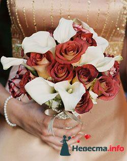 Фото 96711 в коллекции Букет Невесты - Свадебный распорядитель. Яна