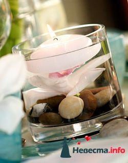 Фото 96739 в коллекции Флористика - Свадебный распорядитель. Яна
