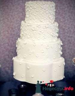 Фото 96788 в коллекции Торты - Свадебный распорядитель. Яна