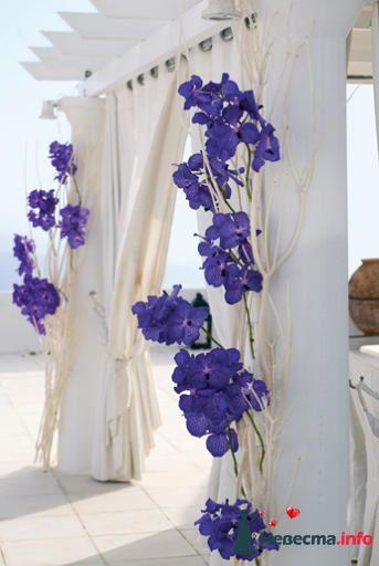 Фото 99584 в коллекции Флористика - Свадебный распорядитель. Яна