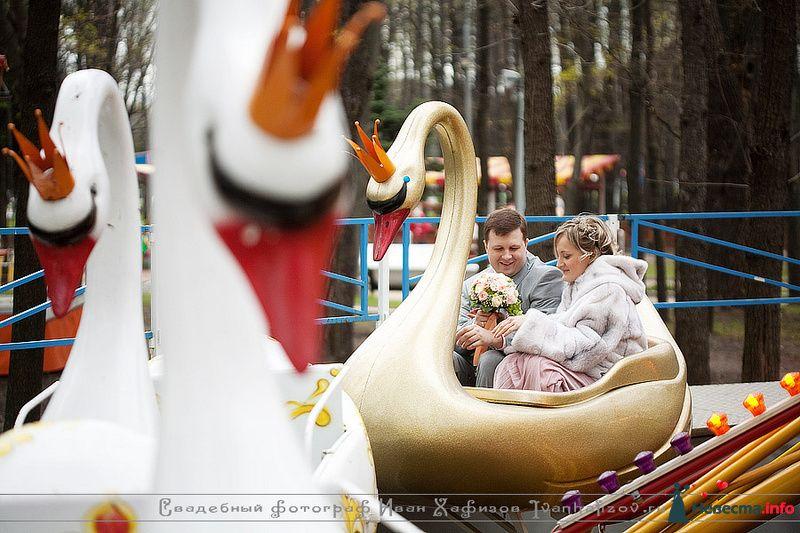 Фото 93192 в коллекции Репортажные свадебные фотографии