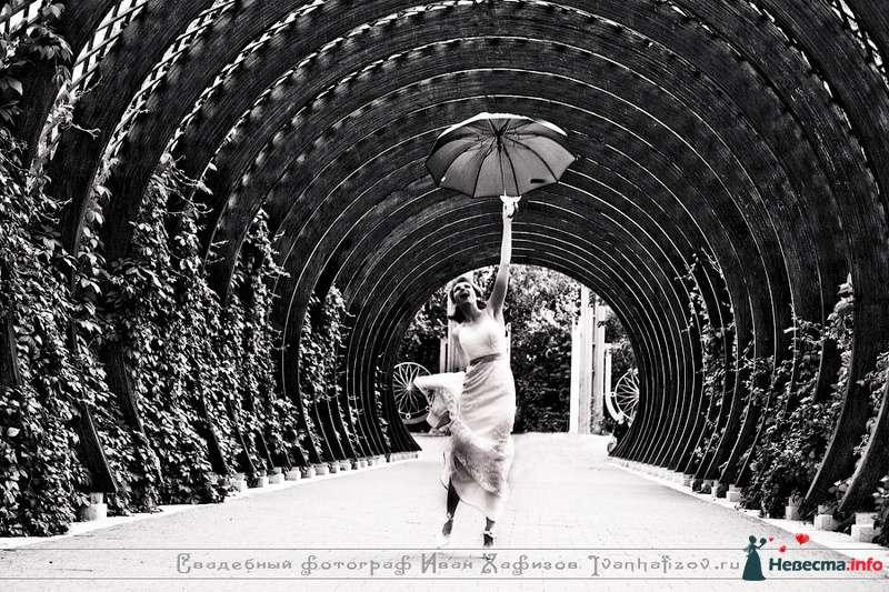 Фото 93245 в коллекции Репортажные свадебные фотографии - Ваш свадебный фотограф Иван Хафизов