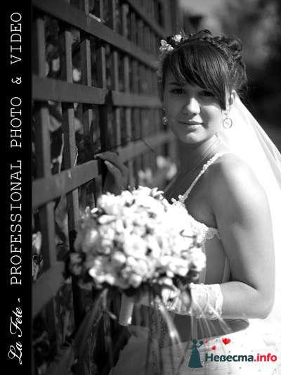 Фото 85536 в коллекции Мои фотографии - Видео студия La Fete - свадебные фото