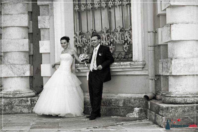 Фото 85551 в коллекции Мои фотографии - Видео студия La Fete - свадебные фото