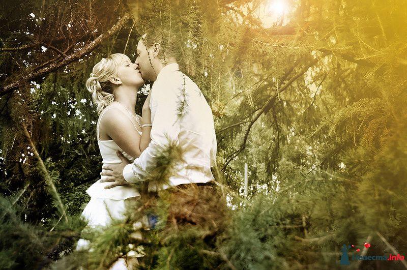 Фото 83299 в коллекции Мои фотографии - Невеста01