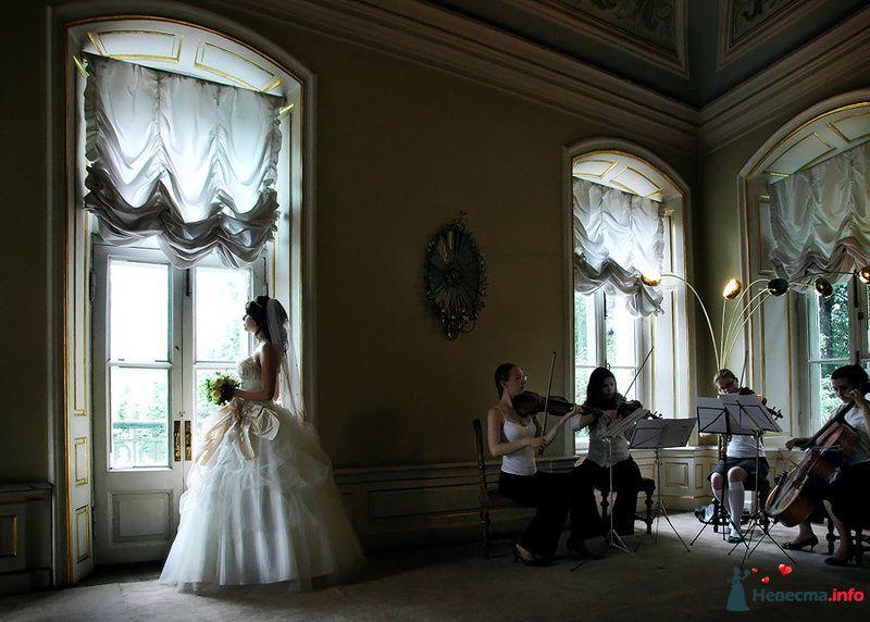 Фото 83300 в коллекции Мои фотографии - Невеста01