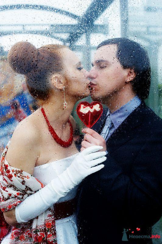 Фото 104532 в коллекции WeddingPhoto - Невеста01