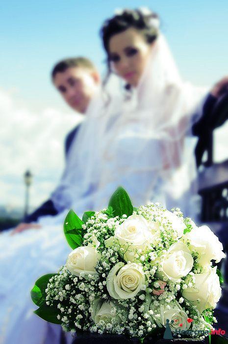Фото 83543 в коллекции Свадебная фотосъёмка