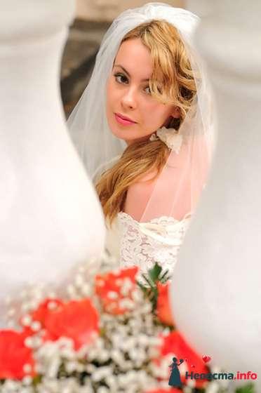 Фото 105901 в коллекции Свадьба - Фотограф Хасан Йенер