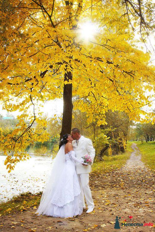 Фото 92475 в коллекции Свадьбы - Юрий Гуцан