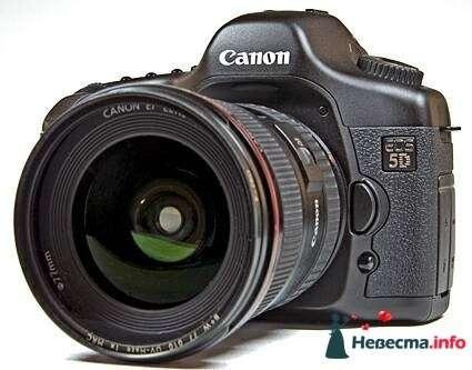 Снимаю профессиональным фотоаппаратом Canon 5d + объективы - фото 87261 Fantasy Бийск