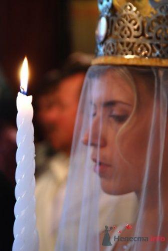 Свадебная - фото 5904 Невеста01